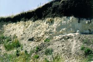 Бентонітові глини